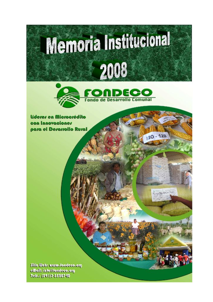 thumbnail of Memoria Institucional 2008